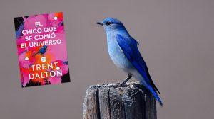 Reseña El Chico que se Comió el Universo - Autor Trent Dalton - Curioso Melomano - Reseña de Libros
